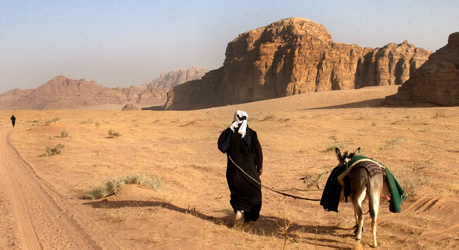 Bedouins moving camels and goats